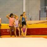 entrainements la nantaise gymnastique