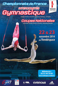 coupes_nationales_gam_gaf_gr_sen_jun_esp_av_ga_et_championnats_de_france_intercomites_gam_gaf_gr_tr_samedi_22_novembre_2014_large