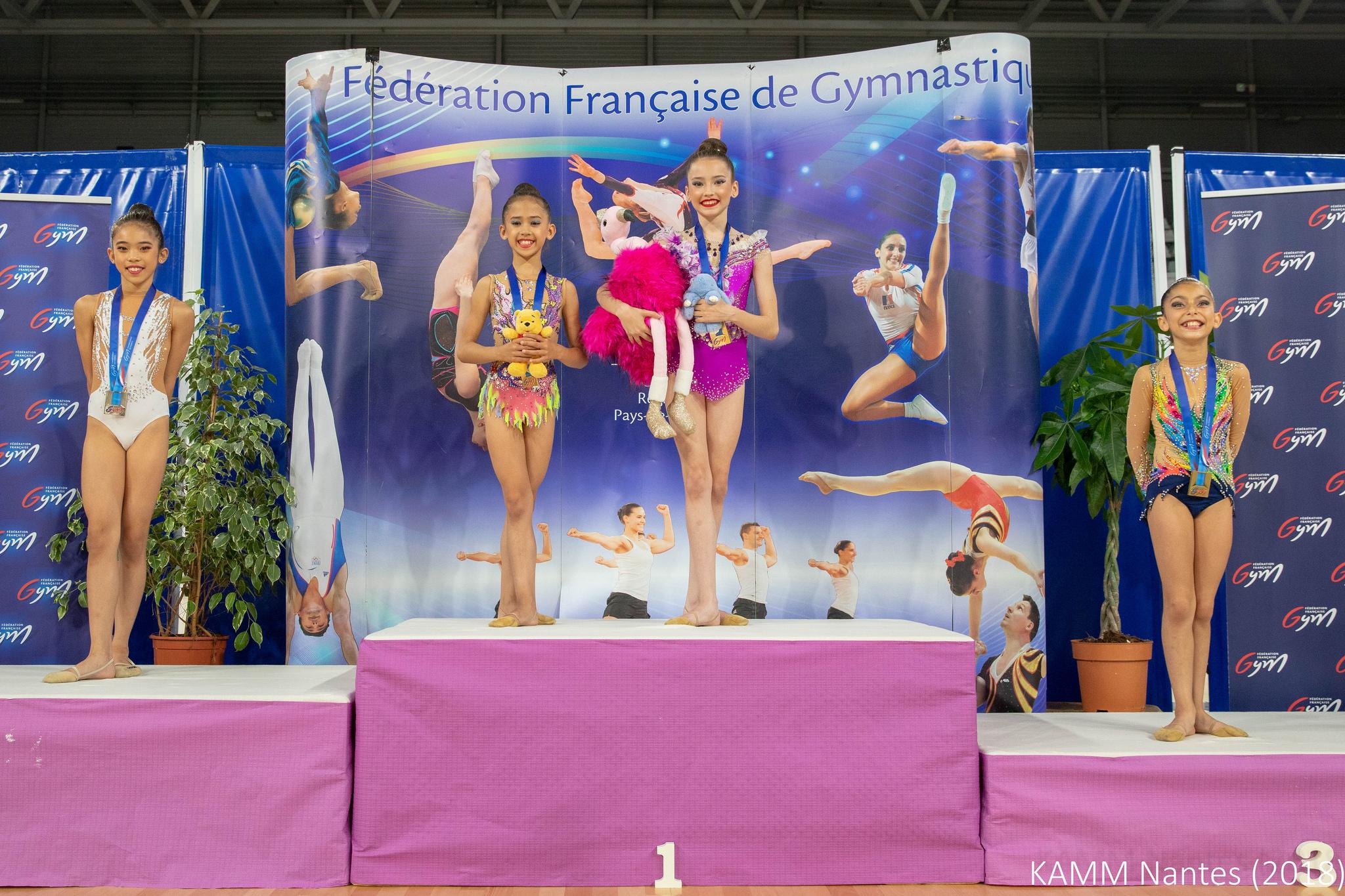 <p>Les championnats de France de Gymnastique Rythmique se sont ouverts hier à la Trocardière avec la catégorie Avenirs. Après une belle compétition, nous connaissons les noms des deux nouvelles championnes de France 2018. Chez les 10 ans, Line Pouvreaux (Union Hoerdt) a été sacrée championne de France avec 24,983 points. [&hellip;]</p>