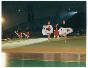 1993 - La Nantaise 110 ans