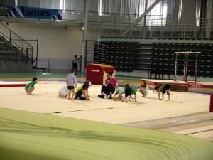 Le Roi Lion - Baby Gym1